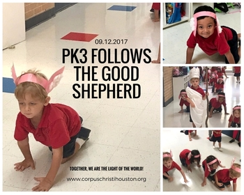 PK3 Follows the Good Shepherd