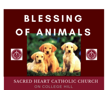 Blessing of Animals October 6