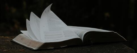 NEW!<br />Opening the Word<br />Unpack The Sunday Readings