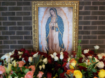 Our Lady of Guadalupe Celebration