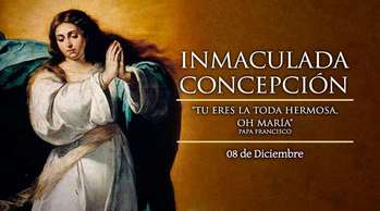 Immaculate Conception/Inmaculada Concepcion