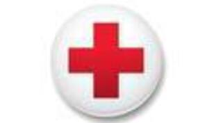 Donate Blood in Honor of Abby Droessler - July 22 and 23 (click here)