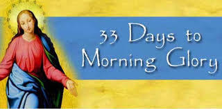 33 Days to Morning Glory by Fr. Michael Gaitley - Nov 9 (Click here)