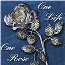 Silver Rose on October 25th