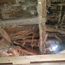 Garden House Damage By Termites
