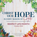 Pro Life Ministry Update