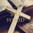 Synod 2018 Roman Catholic Diocese of Burlington