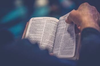 Making Sense of the Bible in the Catholic Tradition