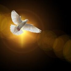 St. Alban's Pentecost Cookout and Choral Evensong
