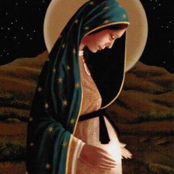Holy Hour & Rosary for Protection of Unborn Children