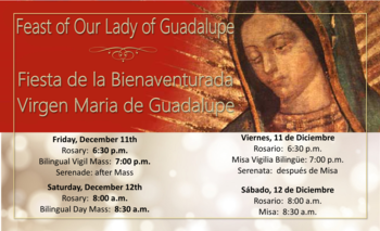 Novena for Our Lady of Guadalupe-Novena a la Virgen de Guadalupe