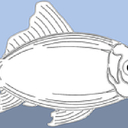 Fish (Cod) For Sale