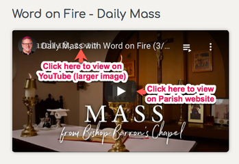 Daily Mass Online at our Parish's Website - Bishop Barron's Chapel
