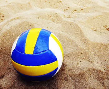 Volleyball Playoffs and Championships