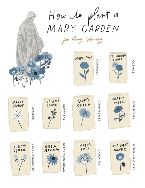 https://beaheart.com/blogs/blog/plant-a-mary-garden