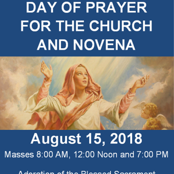 Day of Prayer for the Church and Novena