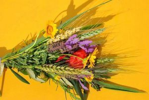 Blessing of flowers and grains @ St Hedwig's