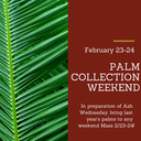 Palm Collection