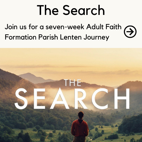 Call the Parish Office to register for The Search Faith Formation series.