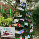 Art Students Decorate Celebration in the Oaks Tree