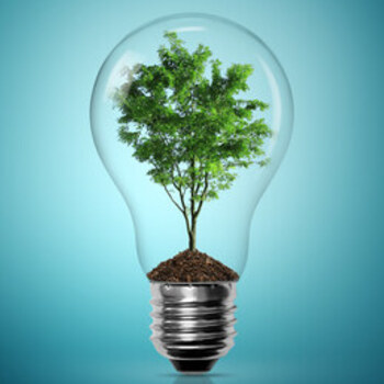 Energy Conservation within your Parish... and Beyond!