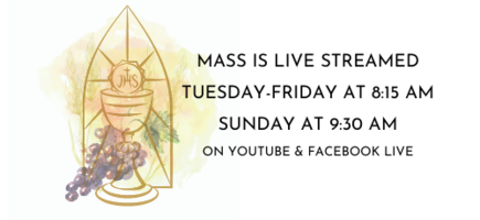 Live stream mass scheuld, Tuesday thru Friday at 8:15 AM, Sunday at 9:30, click link to go to St. Mark YouTube channel
