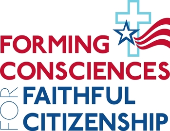 Document 'Forming Consciences for Faithful Citizenship' examined