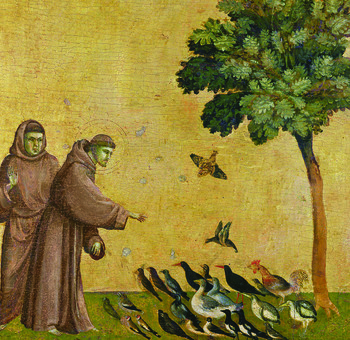 """New """"TALKS"""" series opportunity for Catholics to learn more about the faith"""