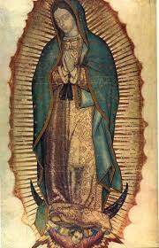 Our Lady of Guadalupe Mass Schedule