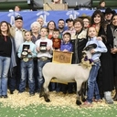 2018 Show Results