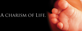 Respect Life Meeting (Westchester County area)