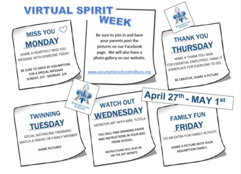 Virtual Spirit Week II