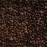 Our Coffee Supply