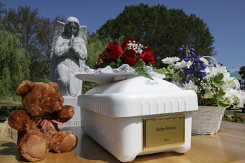 """Baby Francis"" finally laid to rest"