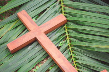 Distribution of Blessed Palms