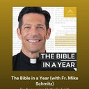 The Bible in a Year Podcast with Fr. Mike Schmitz