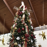 Tree of Remembrance - Lighting & Blessing