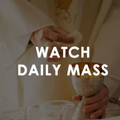 St. Peter the Apostle   Watch Daily Mass
