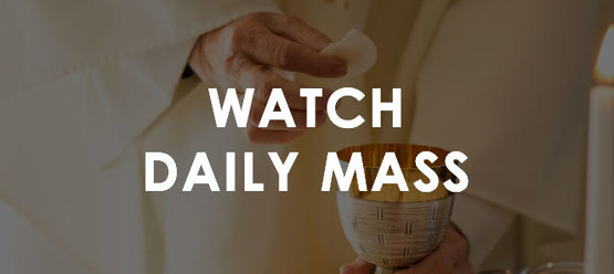 St. Peter the Apostle | Watch Daily Mass