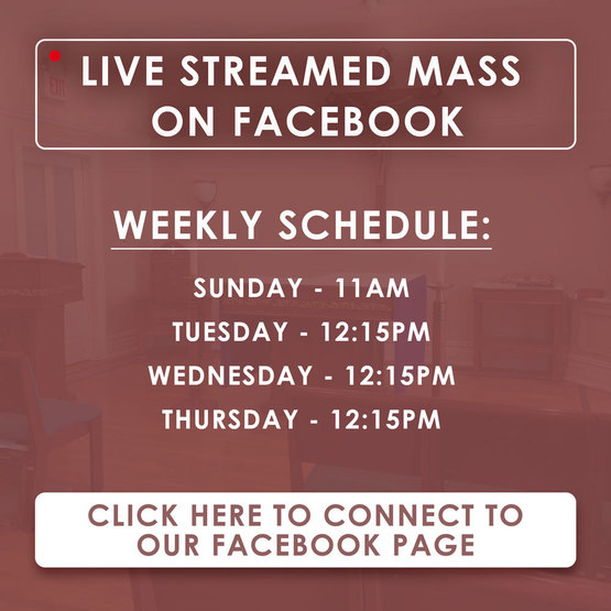 St. Peter the Apostle | Mass Live Streamed on Facebook