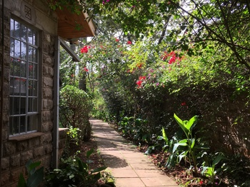 A Dominican Walk Through Kenya (Part 5)