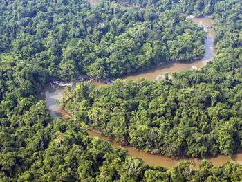The Amazon and the Synod on the Amazon