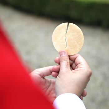Reflection for the Seventeenth Sunday in Ordinary Time