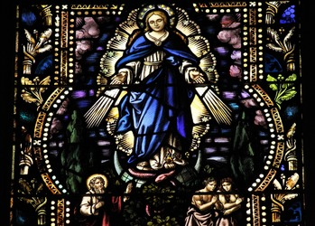Bilingual Mass (The Assumption of the Virgin Mary)
