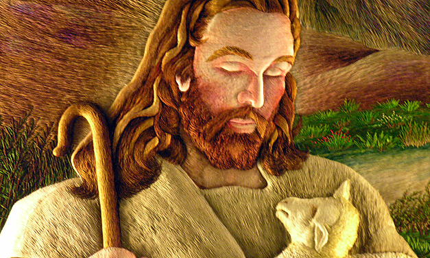 United Catholic Appeal 2011 - FAQ's