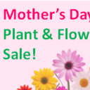 Mother's Day Plant and Flower Sale