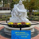 40 Days for Life - Rosary on the Green