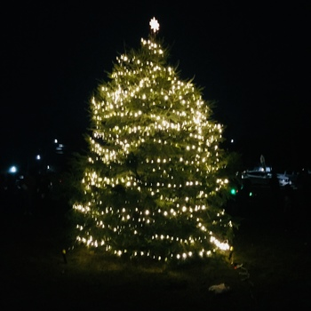 Photos from the Christmas Tree Lighting on the Parish Green