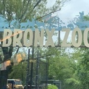 Bronz Zoo & Alley Pond