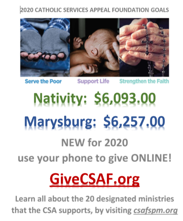2020 Catholic Services Appeal Goals